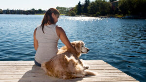 Calgary Dog Trainer